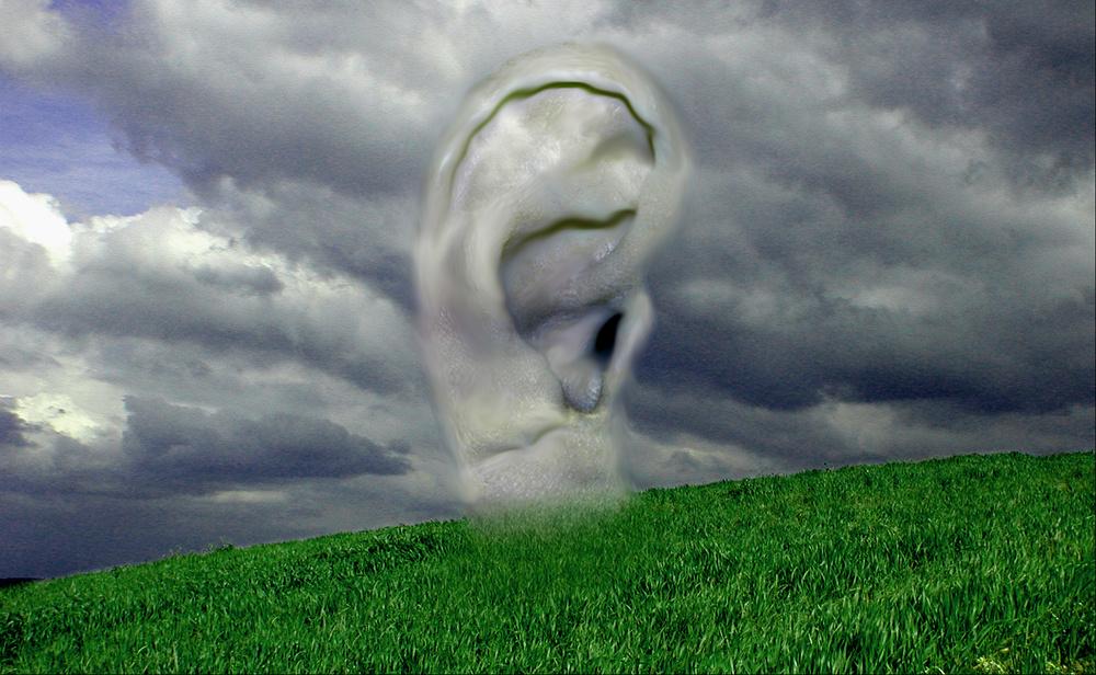 la natura ascolta