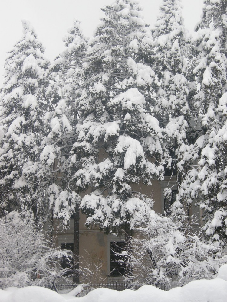 ...La Neve...