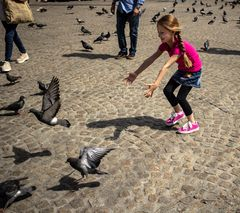 La niña y las palomas