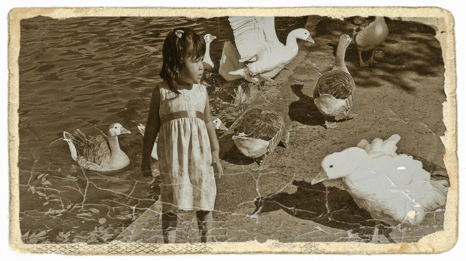 La niña y los gansos I