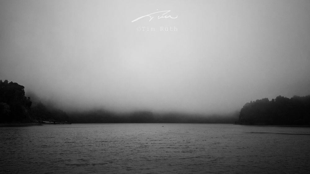 La niebla del olvido...
