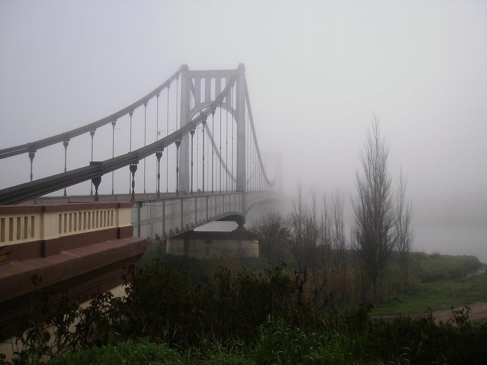 la niebla y el puente colgante