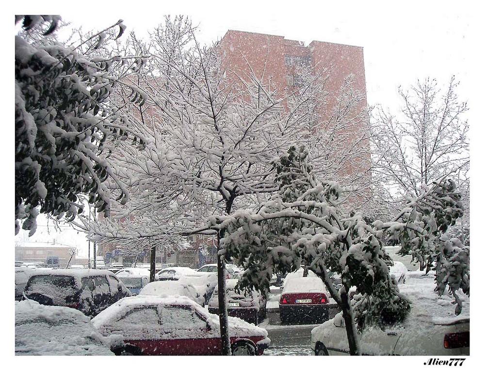 La nieve (Invierno)
