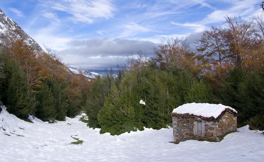 La nieve y el otoño