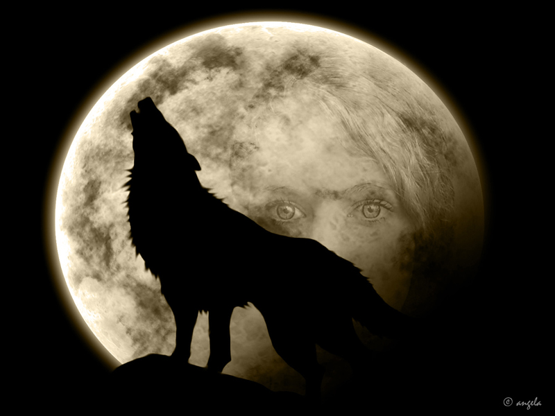 La noche del lobo
