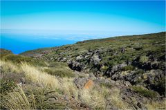 La Palma 2015 - Nr. 1 - Nähe Roque de los Muchachos
