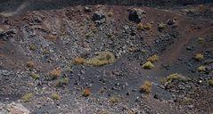 La Palma, Blick in einen Vulkankrater