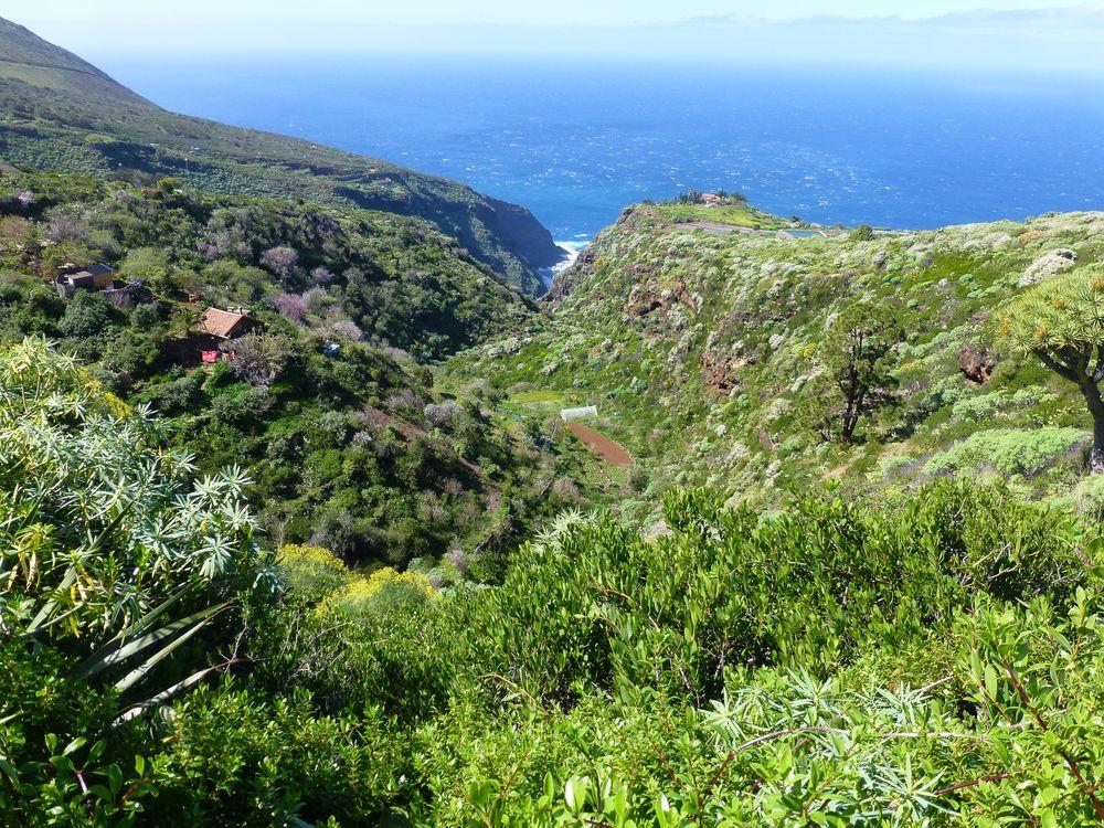 La Palma - Impressionen - Nr. 5
