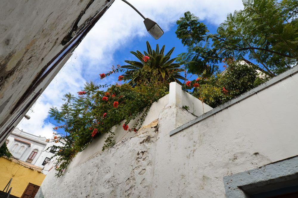 La Palma - Impressionen - Santa Cruz - Nr. 3