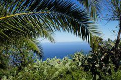 La Palma Nr. 12