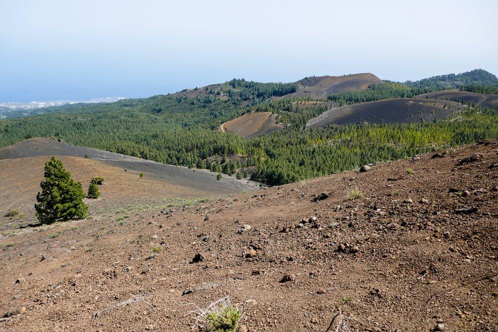 La Palma - Nr. 18