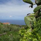 La Palma Nr. 4