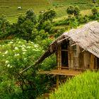 La Pan Tan Village
