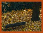 La Panchina e....il suo tappeto