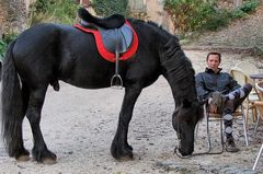 La pause-cheval