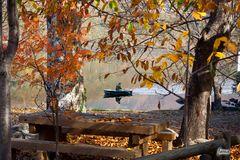 La paz del otoño