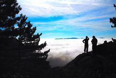 La Pedriza entre la niebla