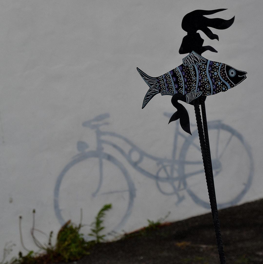 la petite sirène au vélo