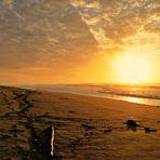 La plage abandonnée....