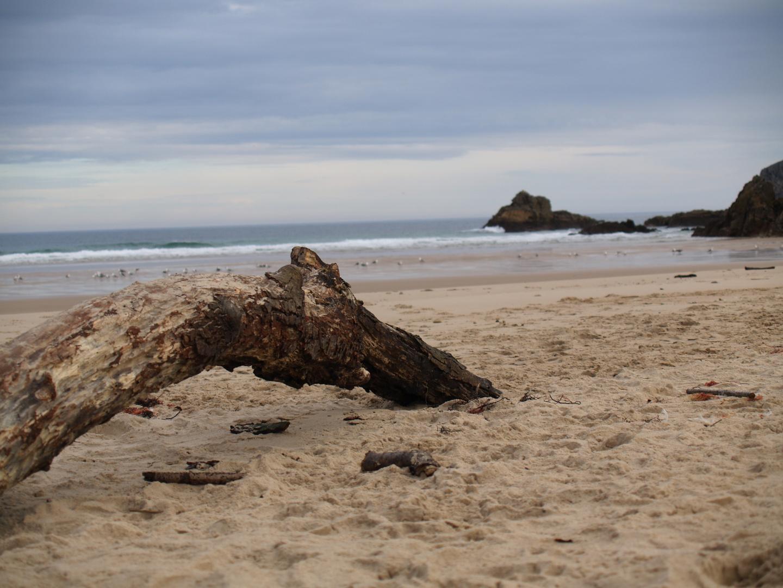 La playa estaba desierta,el mar bañaba tus pies,cantando con mi guitara para ti Mª Isabel