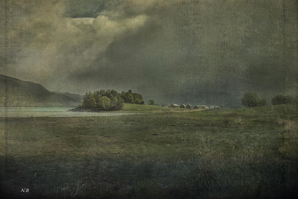 La pradera
