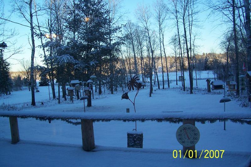 la prima nevicata del 2007