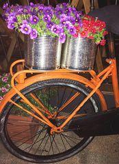 La Primavera arriva in bicicletta...