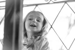 La princesa en la torre