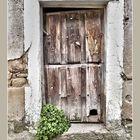 La puerta del gato