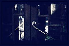 La puerta I