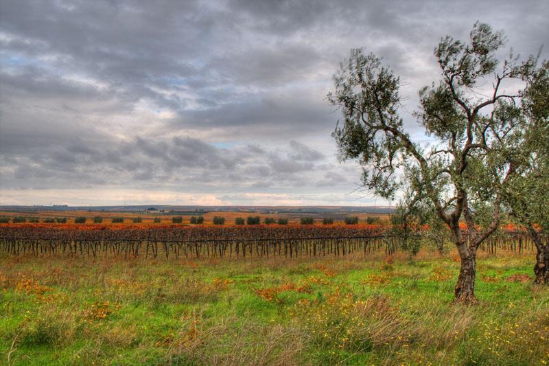 La Puglia, in HDR