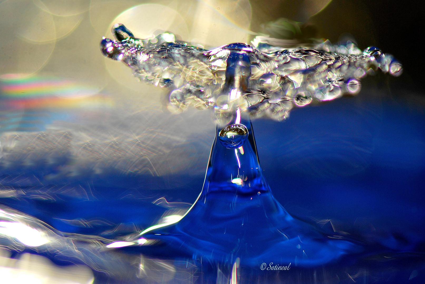 La queue de la baleine bleue photo et image | emotions, imagin tabl'eau,  macro Images fotocommunity