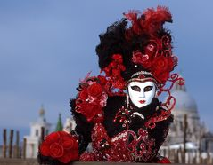 La Reine des Roses II