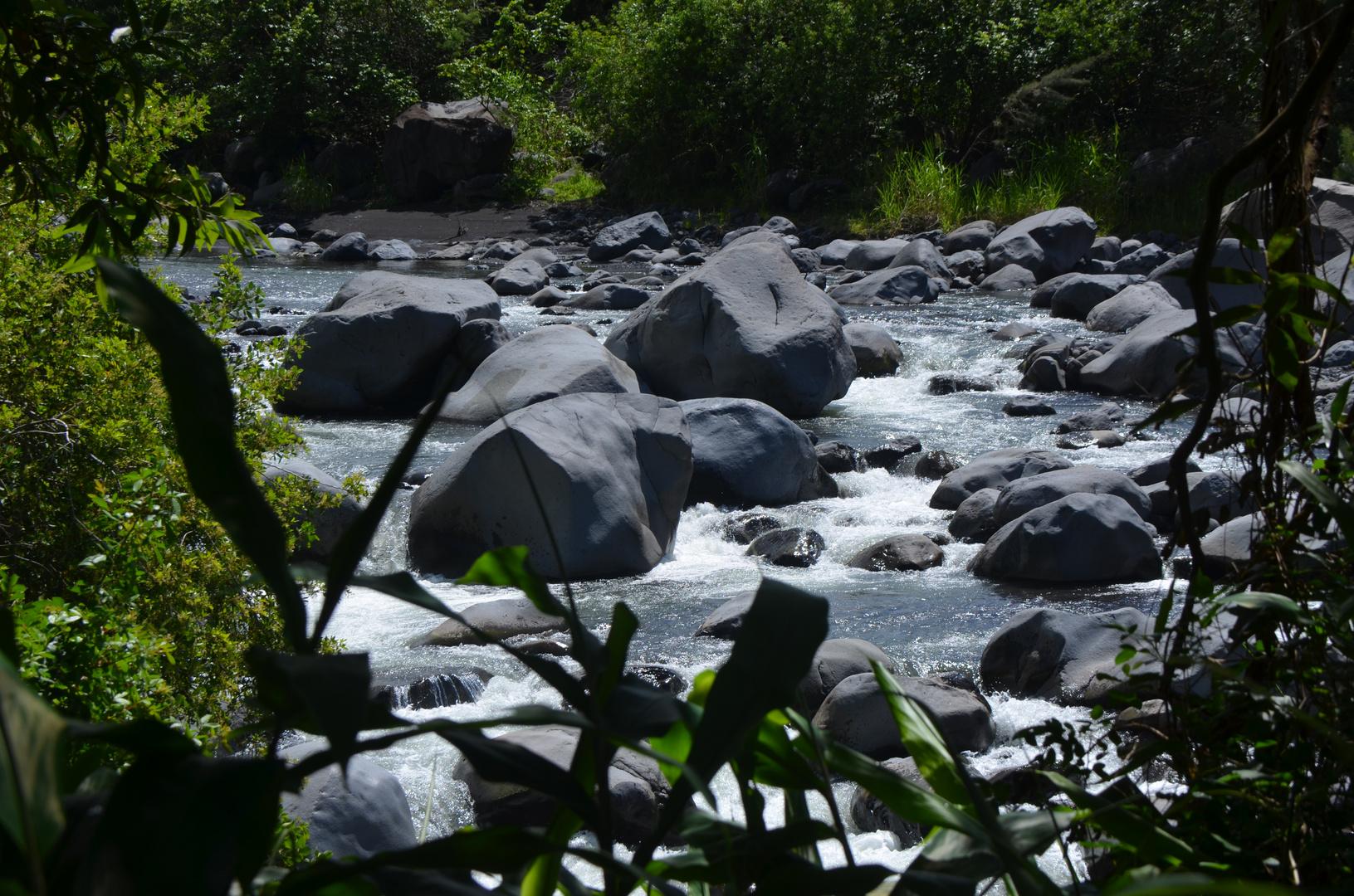 La Réunion - der Riviere du Mat