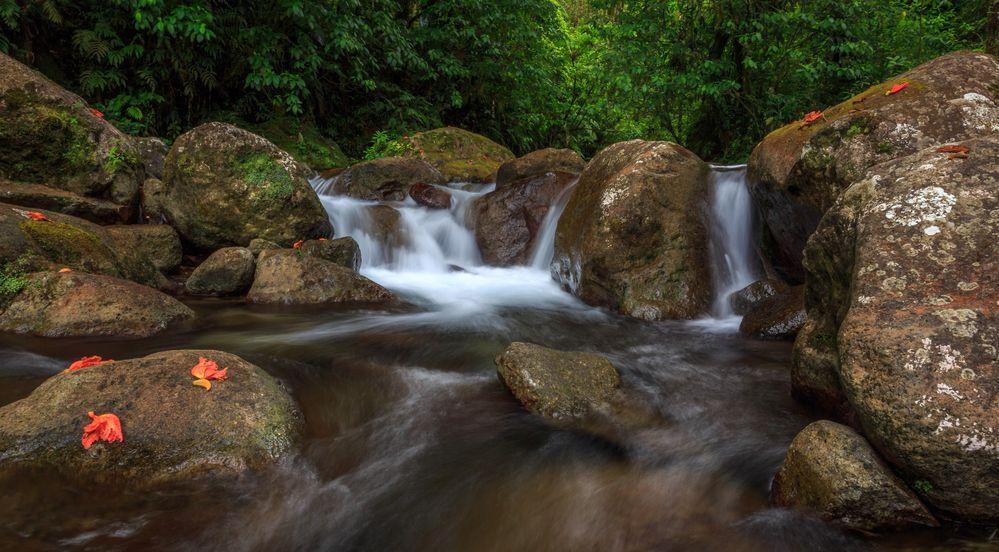 La rivière Alma
