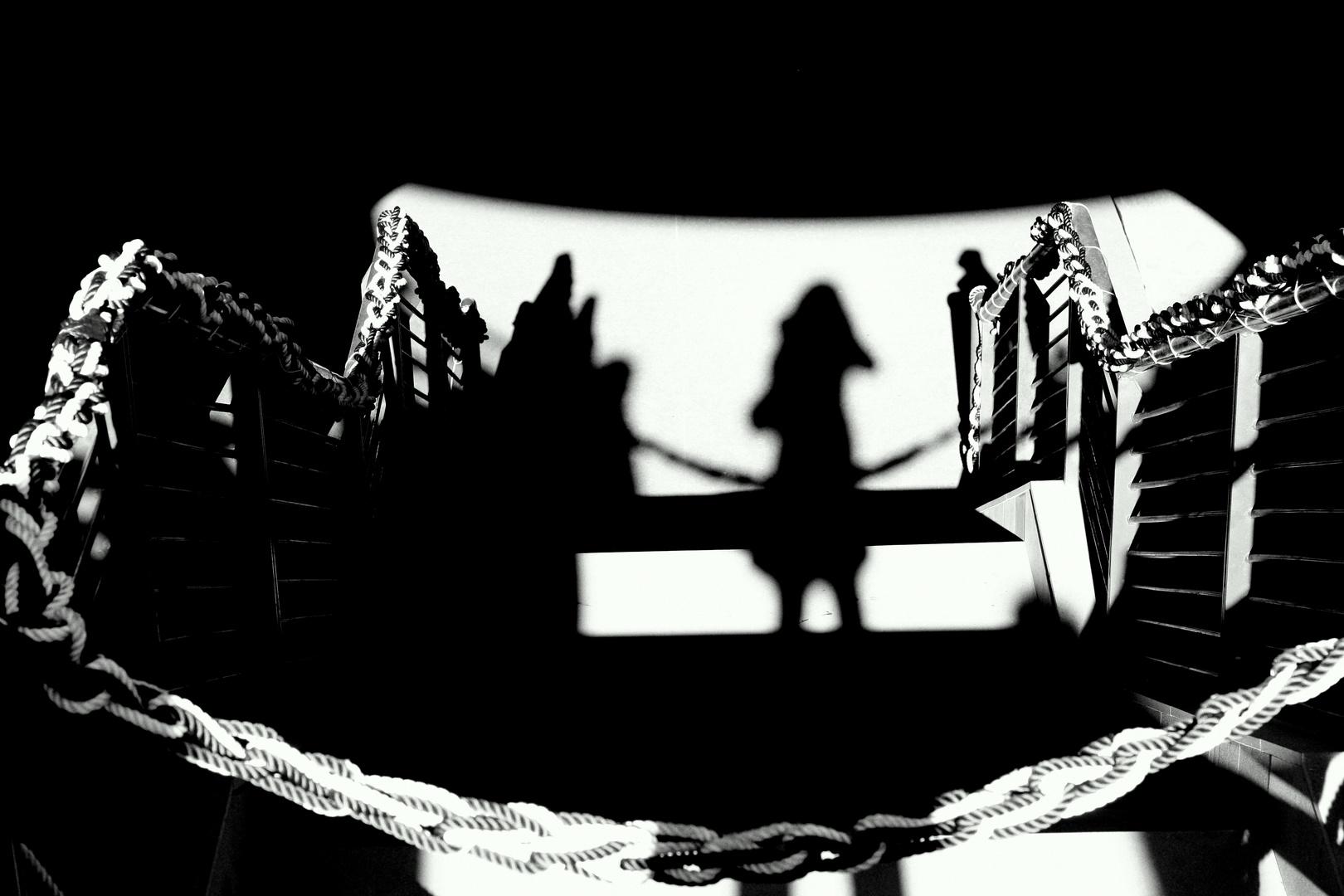 la rivincita dell'ombra