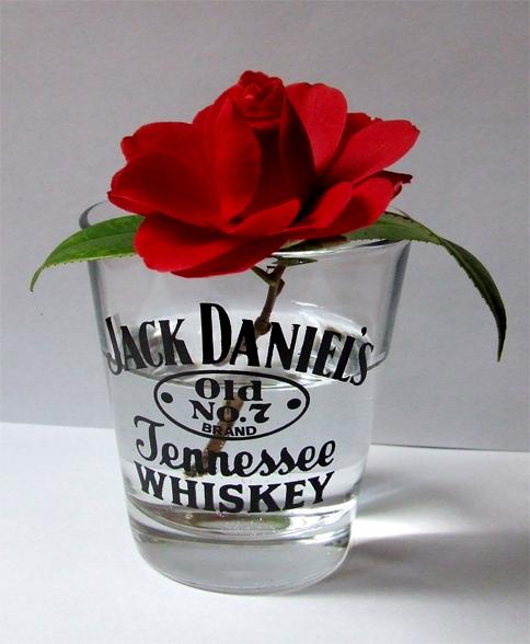 la rose ou le verre?