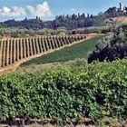 la route du vin et de l huile d olive ....