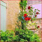 La ruelle aux roses