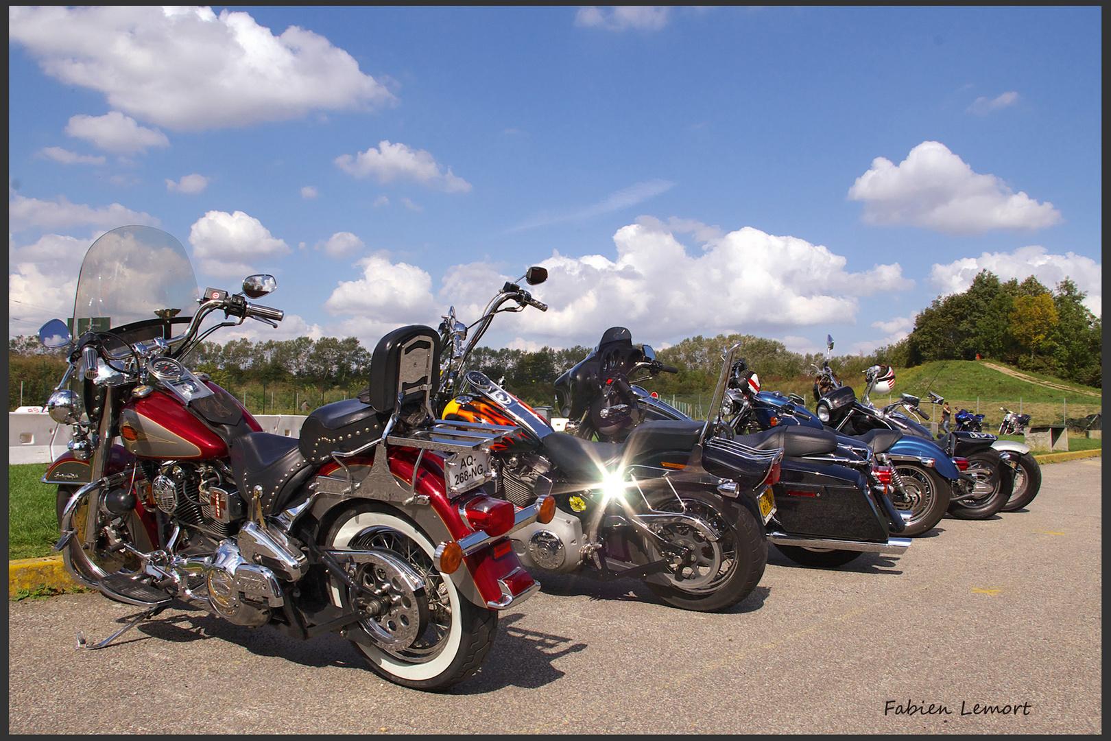 La star des motos