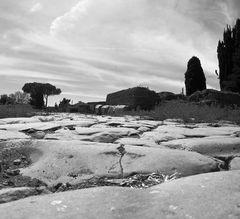 La strada e la bellezza di Ostia Antica