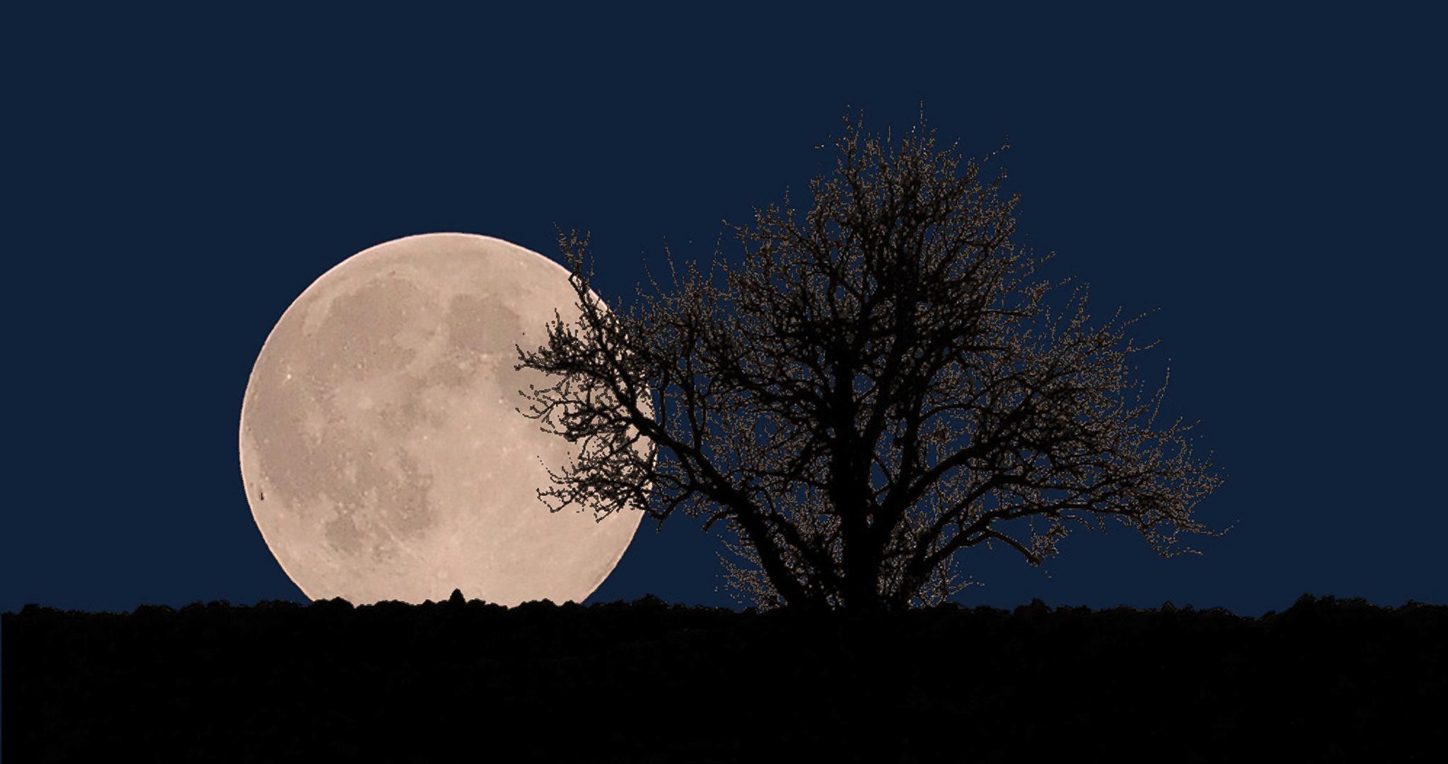 La super lune du 7 avril dans ma campagne