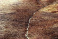 la terra e l'aratro