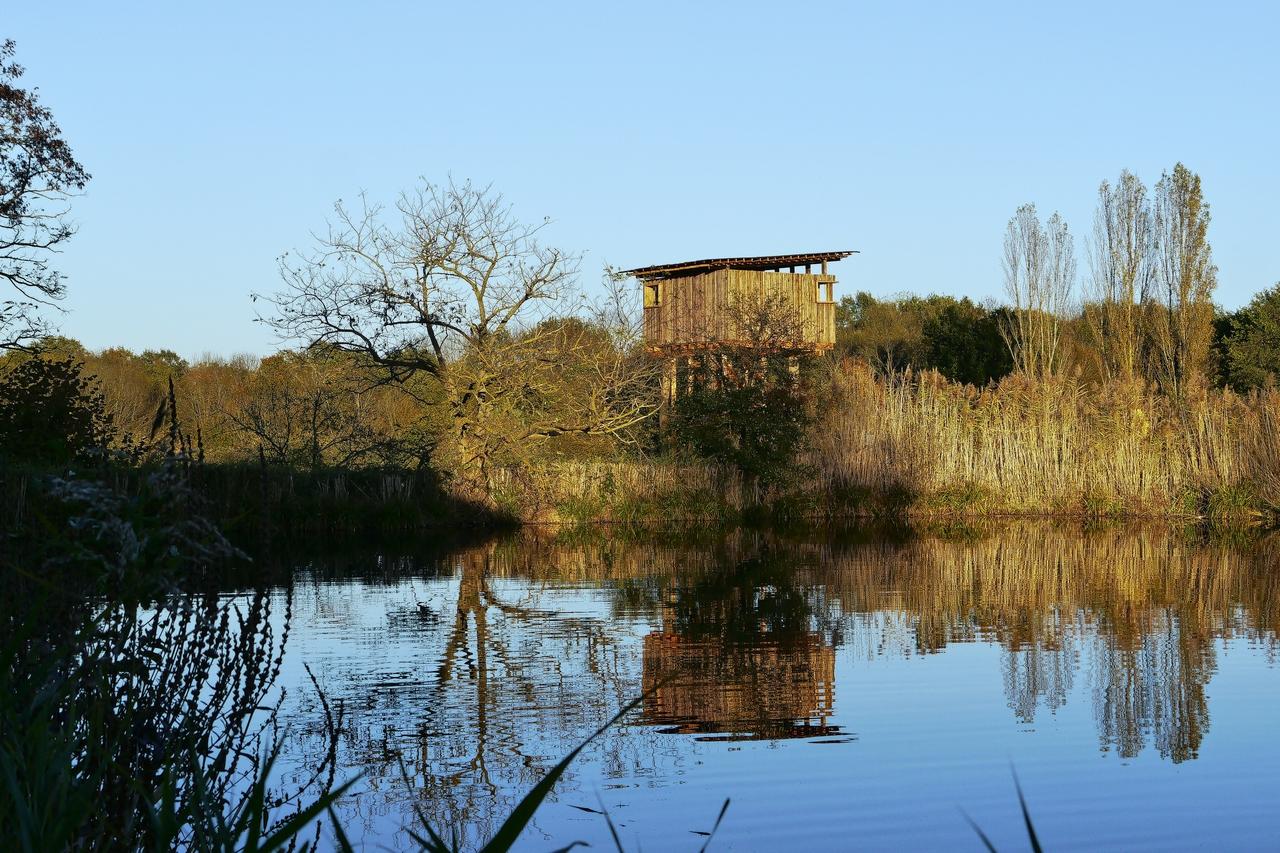 La tour du plan d'eau