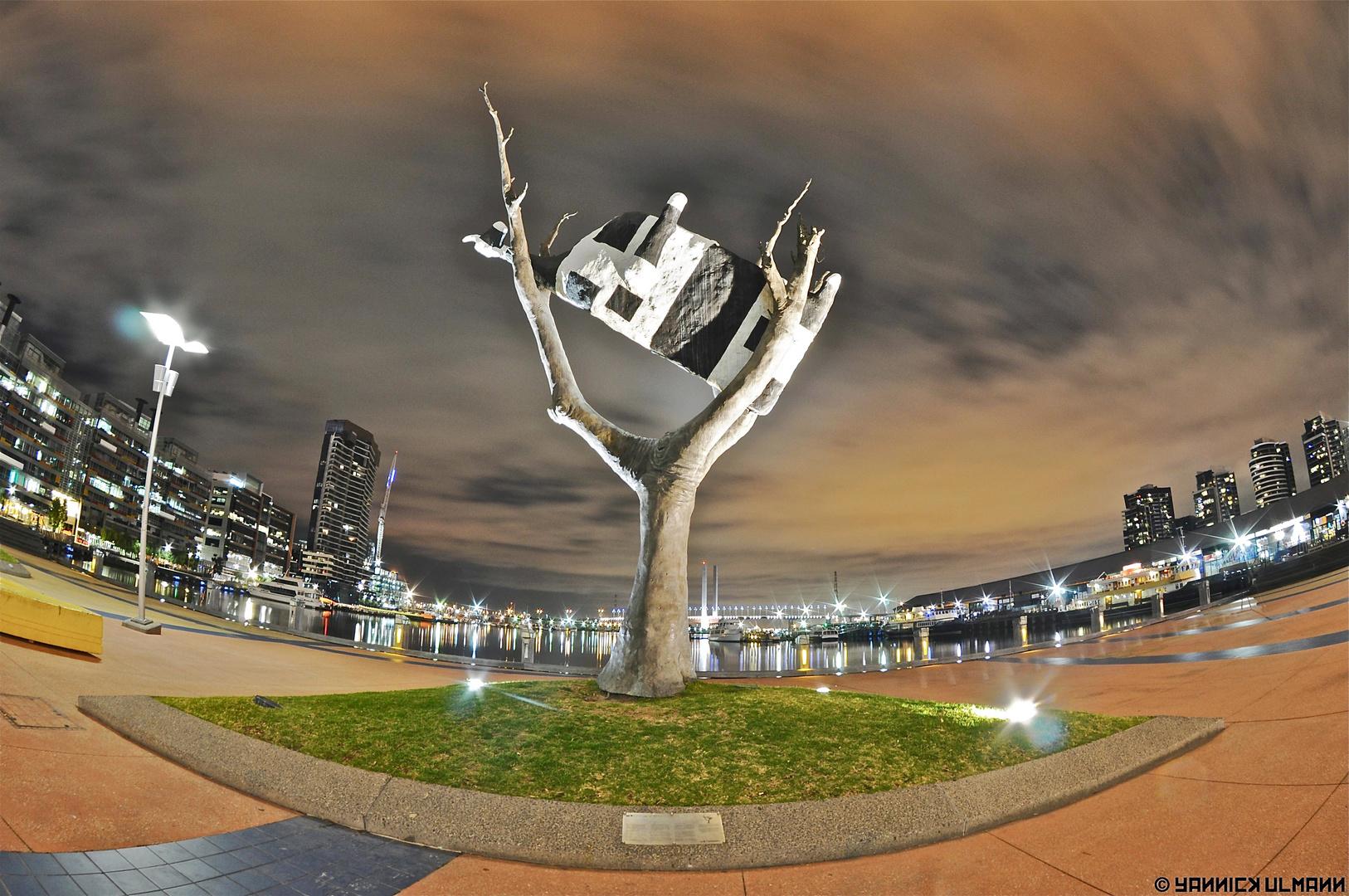 La vache dans l'arbre de Melbourne