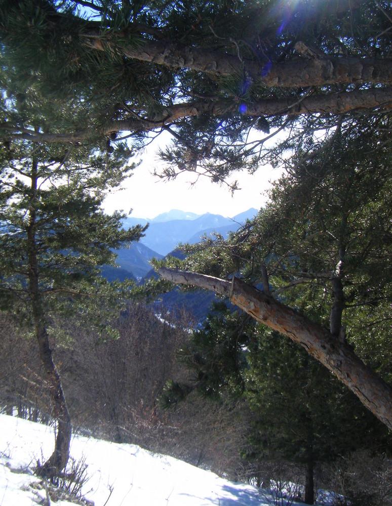 La vallée vu depuis la Cluse  (Entrée du Dévoluy)