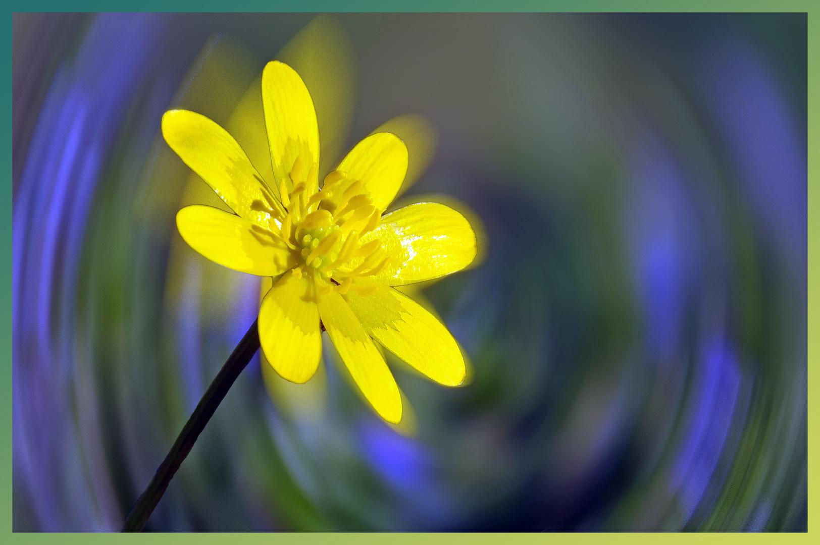 la valse des fleurs.....