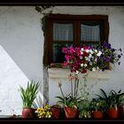 La ventanuca