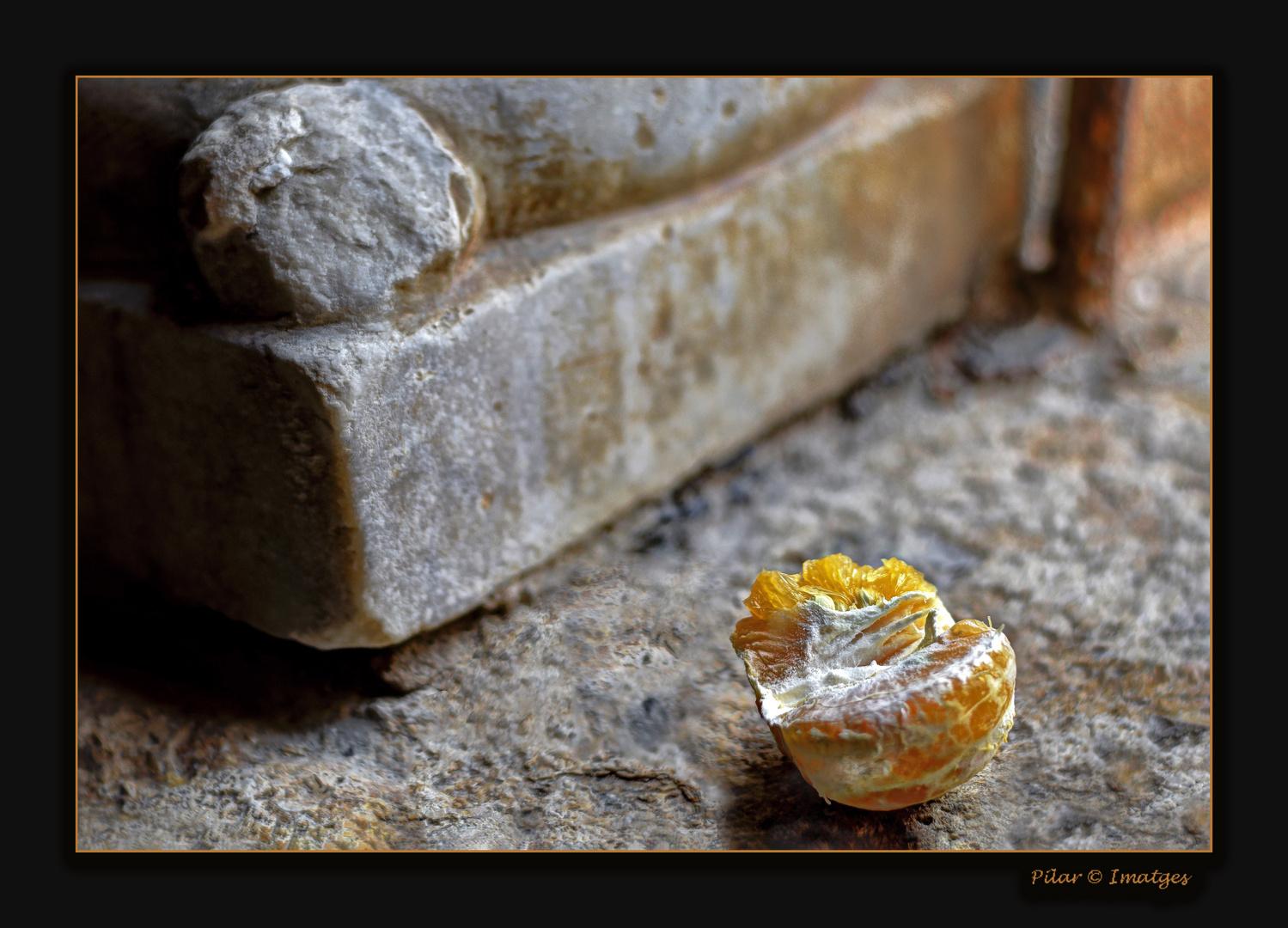 La vida, la piedra
