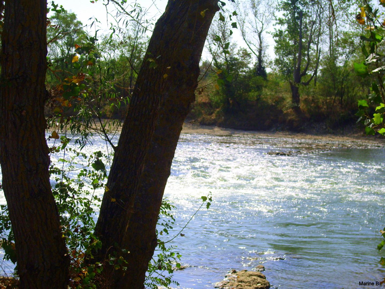 La vie est un long fleuve tranquille. (Ou pas) !